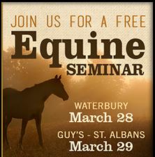 equine seminar