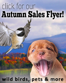 2014 Fall Sale Flyer