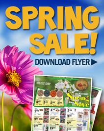 2015 Spring Sale Flyer