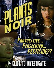 Plants Noir