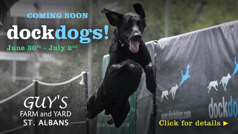 Dock Dogs St. Albans VT
